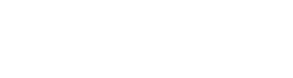 Beings_Systems_Logo